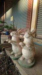 Thais mögen Tiere, nicht nur am Spieß.
